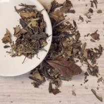 White Peony Tea loose leaf